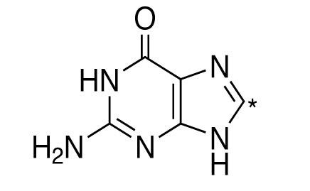 GUANINE(8-13C,98%)|0.5G